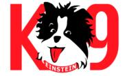 K9Einstein