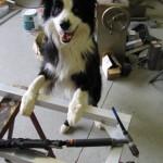 einstein welding