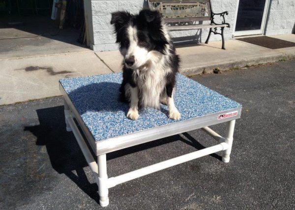 16 inch PVC K9Einstein Table